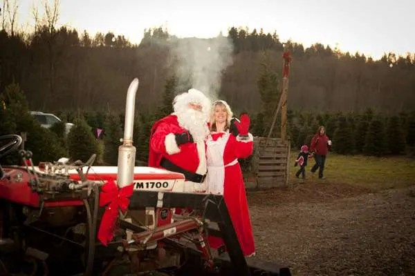 Coates Christmas Tree Farms In Auburn WA Tree Farm Pictures