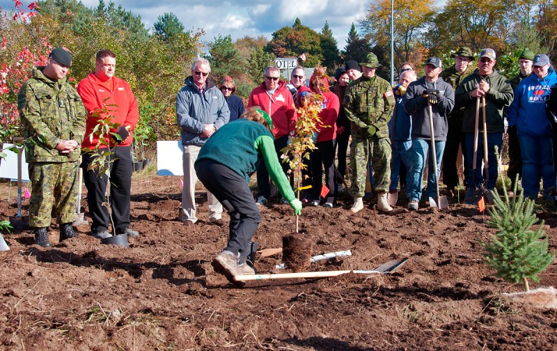 Tree Planting Oct 2018 - Demonstrating how to plant a tree