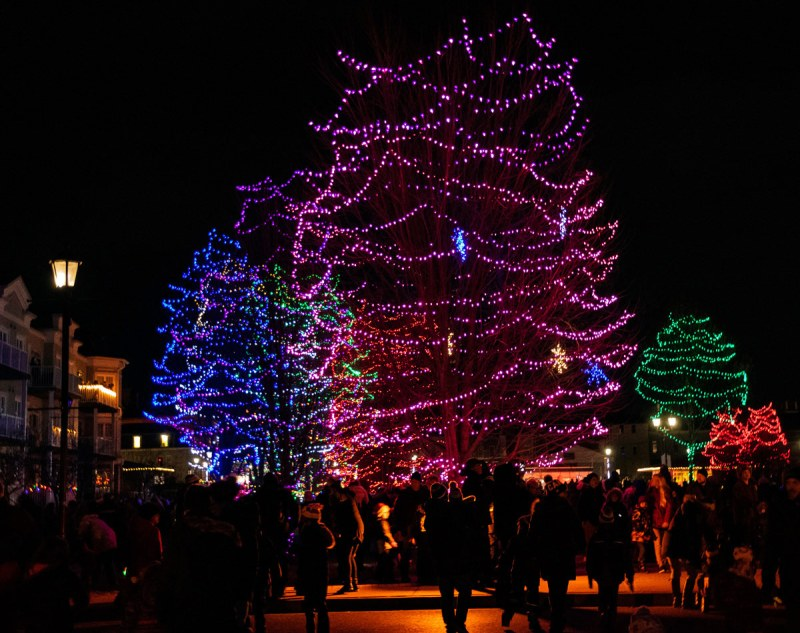 Some of the lights - photo by Rick Miller