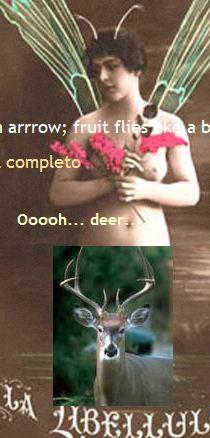 oh deear