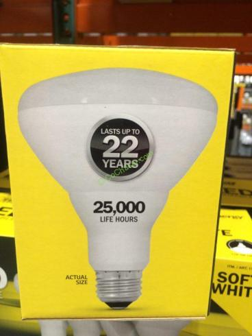 Costco-1136375-Feit-Electric-LED-BR30-Flood-pic