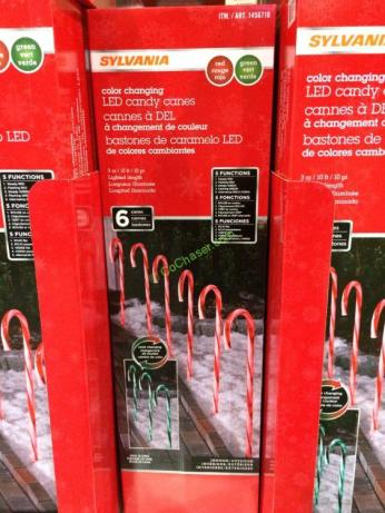 Coost-1456718-Candy-Cane-Pathway-Lights-box