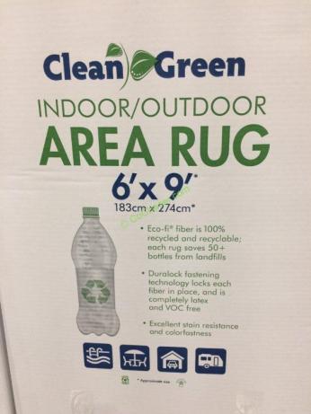 Foss Floors D 233 Cor Indoor Outdoor Area Rug 6 X 9