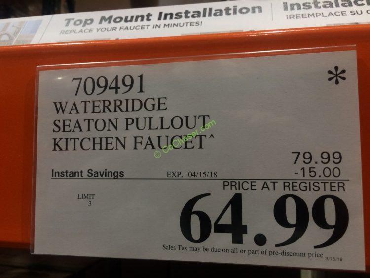 water ridge euro style kitchen faucet