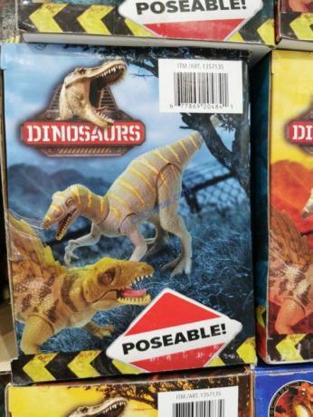 Coostco-1357135-Kid-Galaxy-Dinosaurs-or-Dragons1