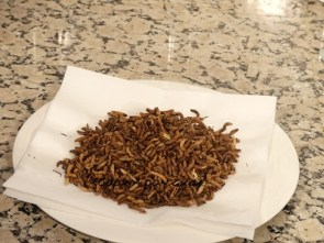 arroz salvaje frito