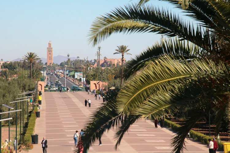 Menara_Garden_(Marrakech,_Moroc)_07