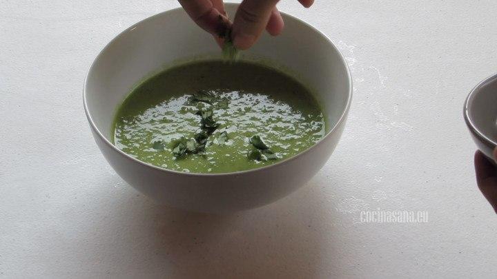 Servir la Sopa con Cilantro y un poco de crema para que tenga una textura más suave y espesa.