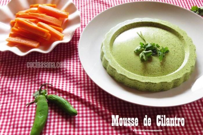 receta fácil de Mousse de Cilantro
