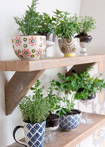 mini-huerto-cocina-tazas