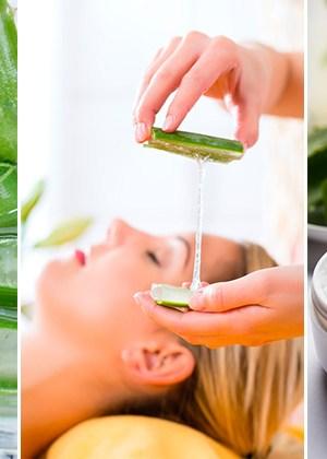 Haz esta receta de aloe vera o sábila para hidratar la piel, ¡lucirá doblemente hermosa!