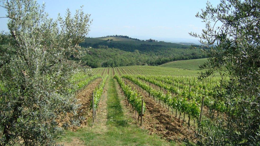 Mayo-20-Siena-y-Chianti-Val