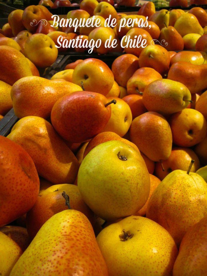 CHILE 2015 -11_tnR