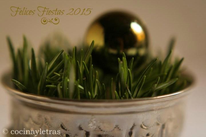 FIESTAS-2015-4R