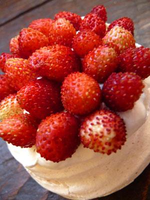 fraises des bois 01 ©cocineraloca.fr