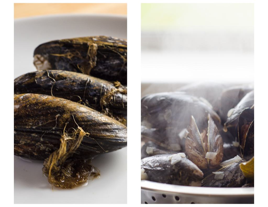 mussel cooking tips