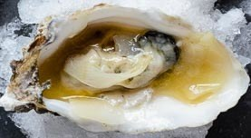 Japanese style oysters