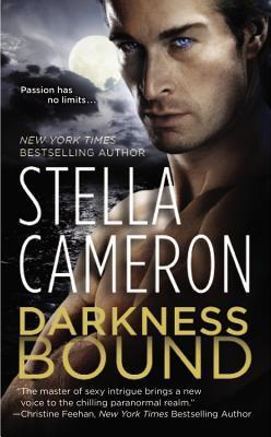 Review: Darkness Bound – Stella Cameron