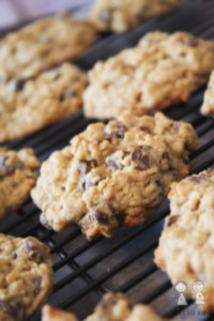 The perfect chocolate chip oatmeal cookies