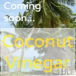 Organic Coconut Vinegar - relieves skin itch fast!