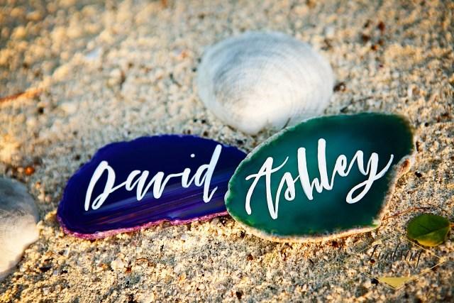 David and Ashley's Belize beach wedding logo