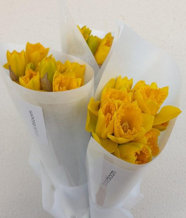 daffodil day bouquet