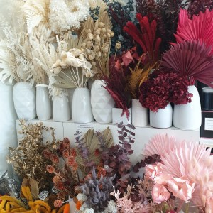 Collection of dried and preserved flowers