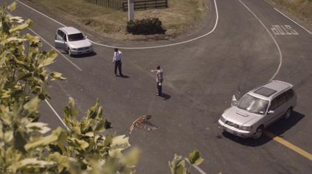 campagne neo zelandaise de sécurité routière