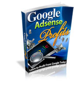Google Adsense Profits