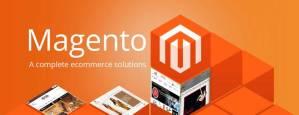 magento-website-developer