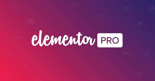 Elementor Pro v3.0.4