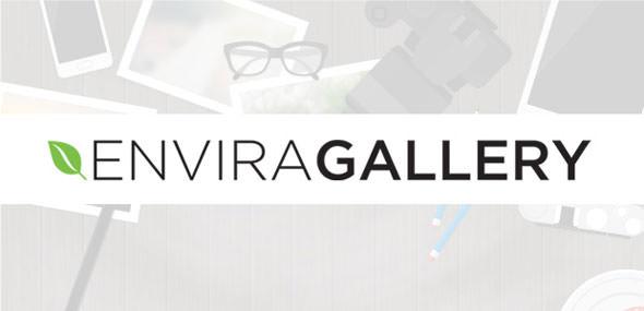 Envira Gallery v1.8.7.3 + Addons