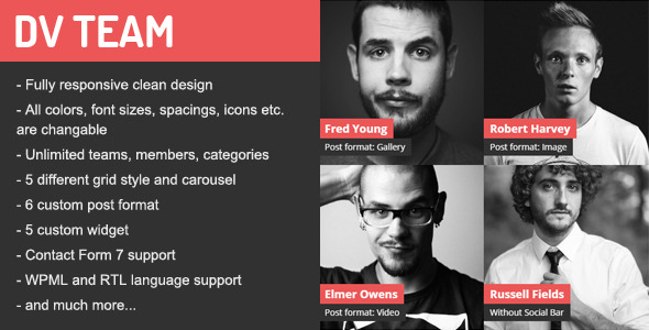 DV Team v1.7.1 – Responsive Team Showcase Plugin