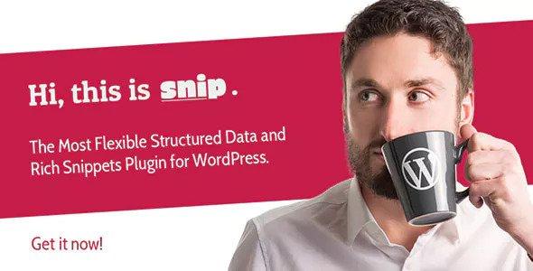 SNIP v2 13 0 – Structured Data Plugin for WordPress
