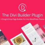 Divi Builder v4.0.11 – Drag & Drop Page Builder Plugin