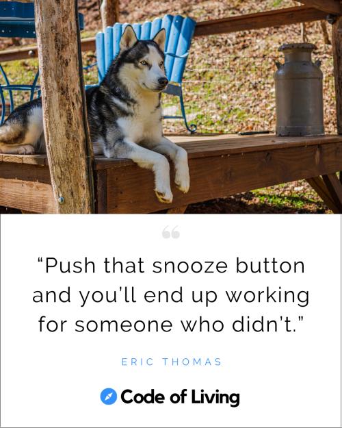 Discipline Quotes- Post Image