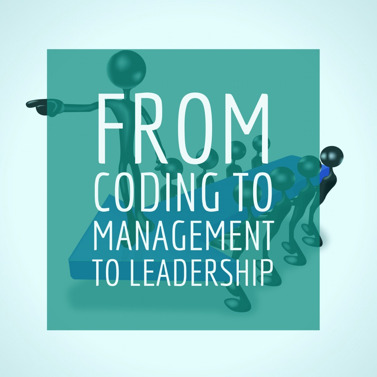 From Coding to Management to Leadership
