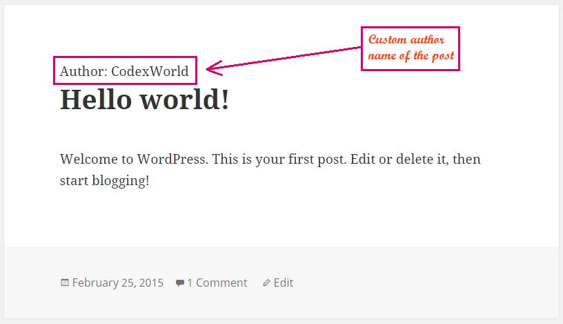 display-custom-meta-value-wordpress