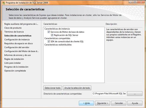Como instalar SQL Server 2008. Opciones de instalación