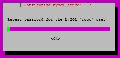 Repetir la clave al instalar mysql