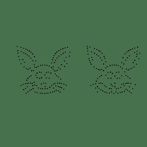Remove closest points rabbit image