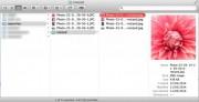 cruncher_directory
