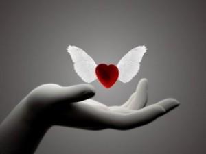 Imagini pentru imagini cu inimioare