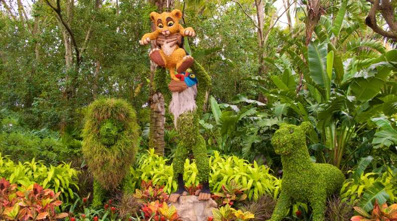 Lion-King-Topiary-Epcot-Flower-Garden-Festival