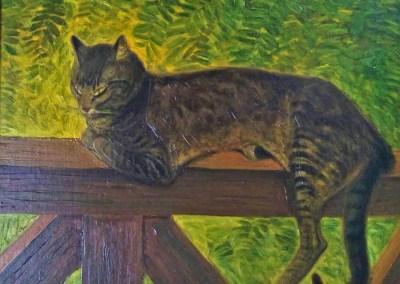 Un Chat sur une Pallissade