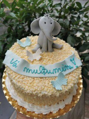 Tort Nasi cu Elefantel