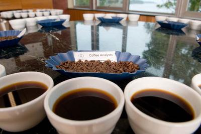 Coffee shelf life samples compared