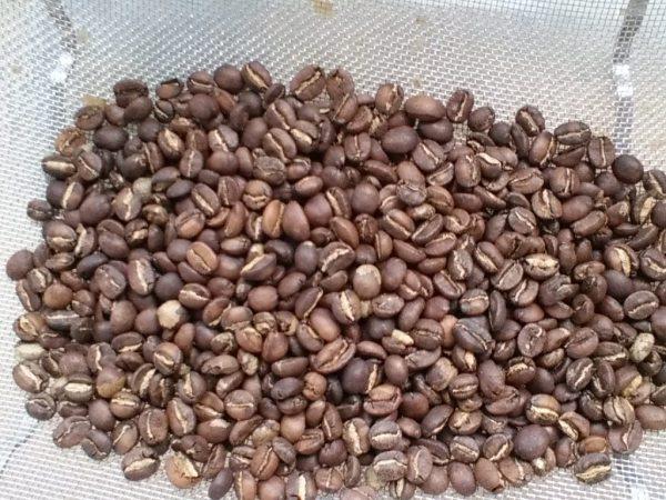 Rwanda Karenge Coffee Villages 1