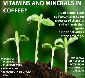 Coffee is a Vitamin (Coffee is a Vitamin)