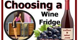 Choosing a Wine Fridge Tips